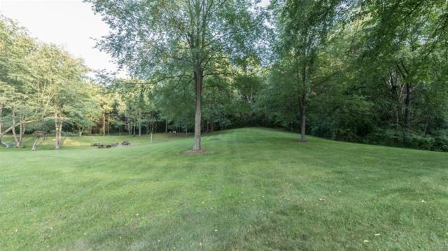 0 Rolling Oaks Drive, Manchester Twp, MI 48158 (#543258112) :: The Buckley Jolley Real Estate Team