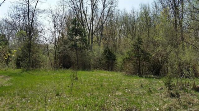 0000 Telegraph Road, Ash Twp, MI 48164 (#218060261) :: RE/MAX Nexus