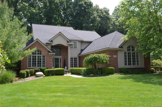 3685 Honors Way, Genoa Twp, MI 48843 (#218060296) :: The Buckley Jolley Real Estate Team