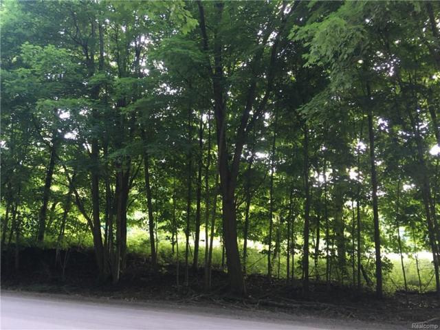8595 Cedar Lake Road, Putnam Twp, MI 48169 (#218060470) :: RE/MAX Classic