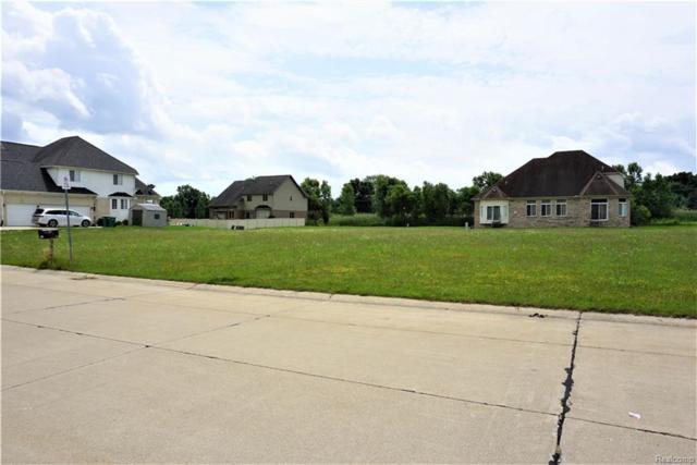 27085 Debiasi Drive, Brownstown Twp, MI 48174 (#218060803) :: The Buckley Jolley Real Estate Team