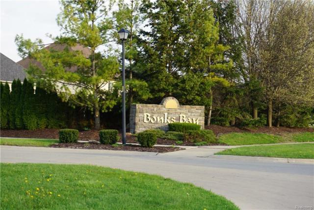 27113 Debiasi Drive, Brownstown Twp, MI 48174 (#218060810) :: The Buckley Jolley Real Estate Team