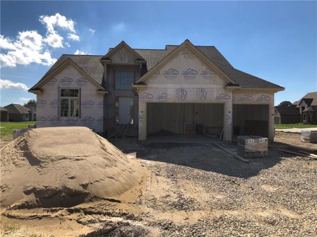 55155 Hidden River Dr Drive, Macomb Twp, MI 48042 (#218061069) :: Duneske Real Estate Advisors