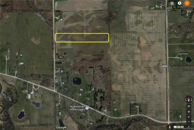 0 Burns Road, Ash Twp, MI 48117 (#218061125) :: RE/MAX Nexus