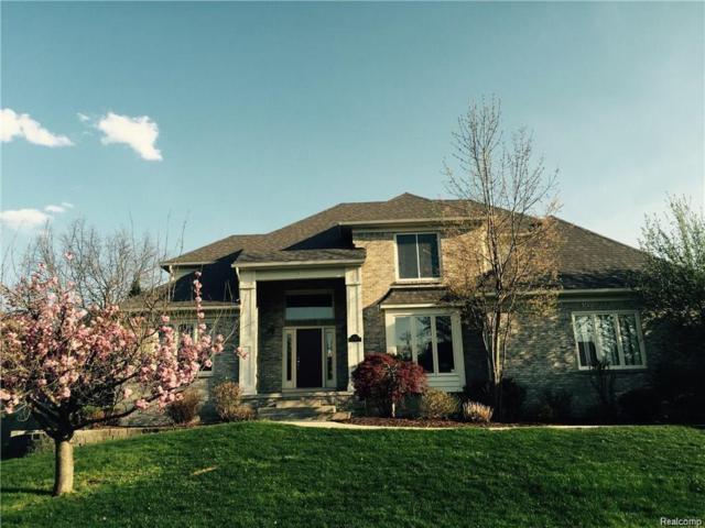 3651 Nesting Ridge Drive, Rochester Hills, MI 48309 (#218061251) :: Duneske Real Estate Advisors