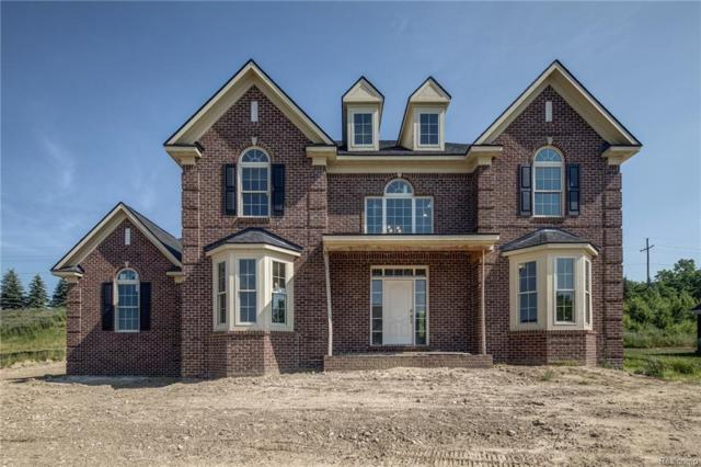 10534 Stoney Point Drive, Green Oak Twp, MI 48178 (#218061309) :: The Buckley Jolley Real Estate Team