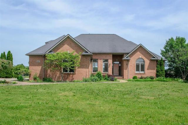 9171 Mirage Lake Drive, York Twp, MI 48160 (#543258314) :: The Buckley Jolley Real Estate Team