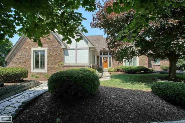 54813 Sherwood Lane, Shelby Twp, MI 48315 (#58031352791) :: Duneske Real Estate Advisors