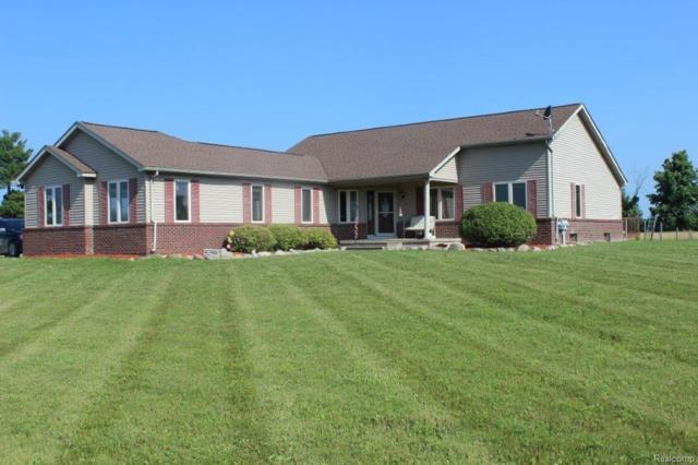 825 Brown City Road, Imlay Twp, MI 48444 (#218061800) :: The Mulvihill Group