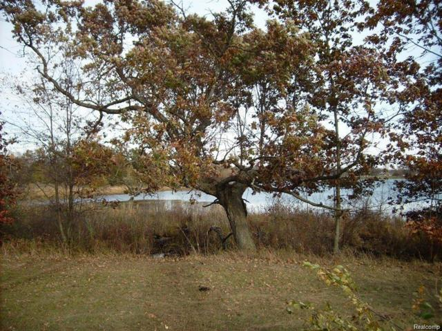 Parcel 0 Price Lake Drive, Napoleon Twp, MI 49201 (MLS #218062186) :: The Toth Team
