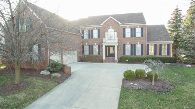26551 Glenwood Drive, Novi, MI 48374 (#218062208) :: The Buckley Jolley Real Estate Team
