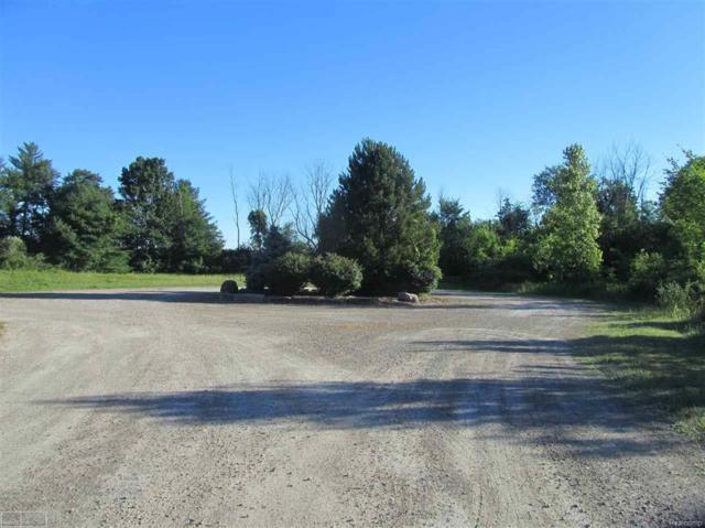 5650 Meadow Ln, ST. CLAIR TWP, MI 48079 (#58031352975) :: Alan Brown Group