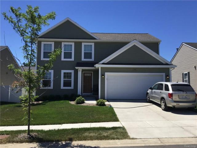 8565 Chippewa River Drive, Handy Twp, MI 48836 (#218062601) :: The Buckley Jolley Real Estate Team