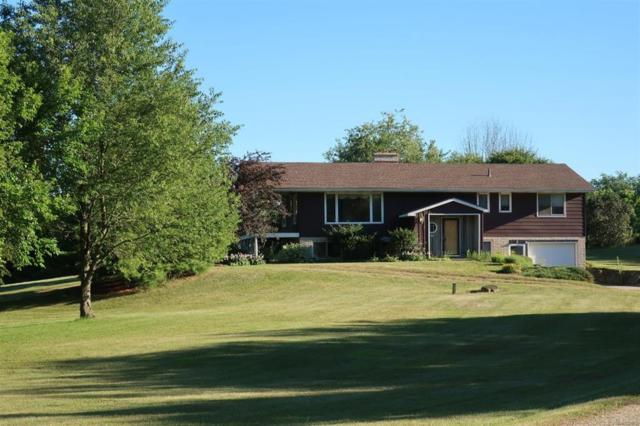 6771 W Munger Road, Franklin Twp, MI 49265 (#543258389) :: The Buckley Jolley Real Estate Team