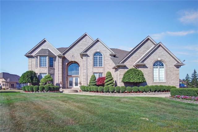 2411 Joseph Drive, Sterling Heights, MI 48314 (#218062676) :: Duneske Real Estate Advisors
