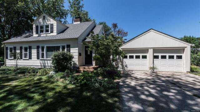 217 Detroit Street, Saline, MI 48176 (#543258413) :: Duneske Real Estate Advisors