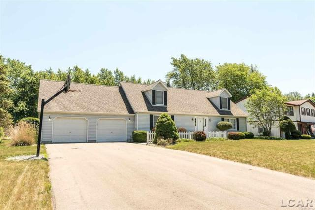 570 Meadowbrook, Adrian, MI 49221 (#56031353140) :: RE/MAX Nexus