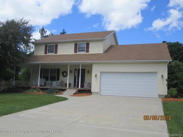 321 Tanbark Drive, Windsor Twp, MI 48821 (#630000228150) :: Duneske Real Estate Advisors