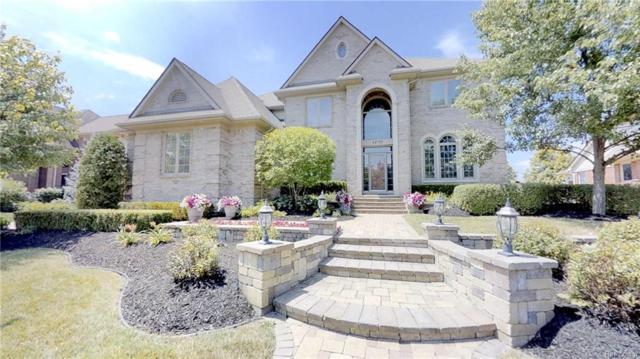 24755 Wedgewood Drive, Lyon Twp, MI 48178 (#218063493) :: Duneske Real Estate Advisors