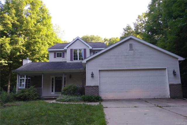 5181 Jamerlea Lane, Handy Twp, MI 48836 (#218063538) :: The Buckley Jolley Real Estate Team