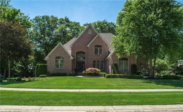 23742 Point O Woods Court, Lyon Twp, MI 48178 (#218063733) :: The Buckley Jolley Real Estate Team
