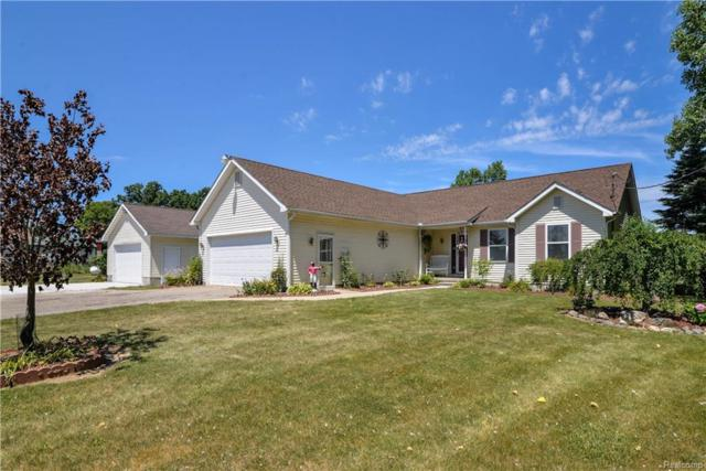 10100 Chase Lake Road, Conway Twp, MI 48836 (#218063803) :: The Buckley Jolley Real Estate Team