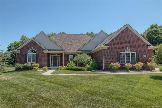23790 Millwood, Lyon Twp, MI 48178 (#218063915) :: The Buckley Jolley Real Estate Team