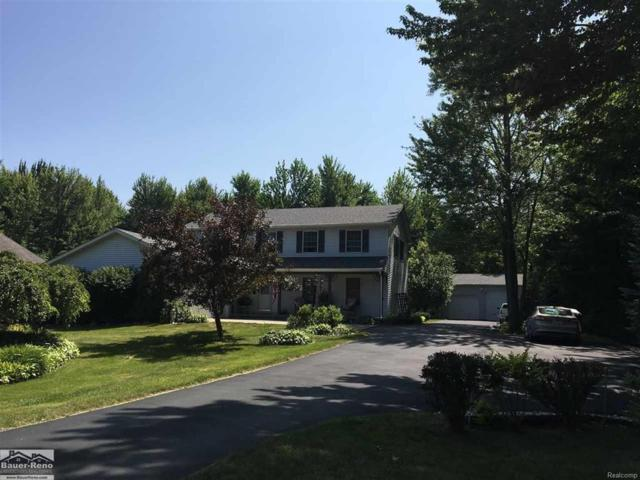 4399 Pine Grove, Fort Gratiot, MI 48059 (#58031353411) :: The Mulvihill Group