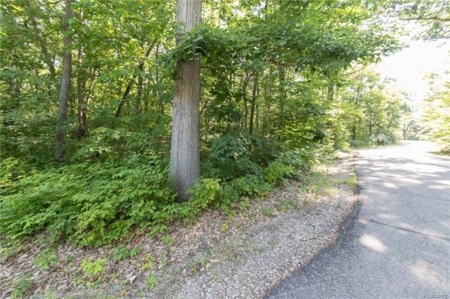 000 Timberhill Road, Manchester Twp, MI 48158 (#218064301) :: RE/MAX Vision