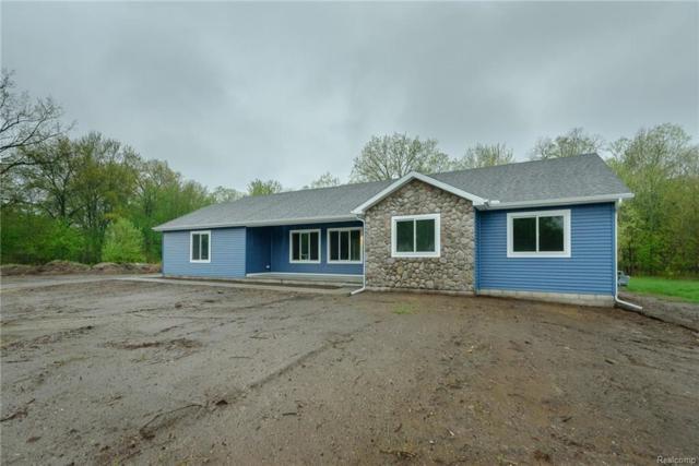 21144 Huron River Drive, Huron Twp, MI 48164 (#218064466) :: Duneske Real Estate Advisors