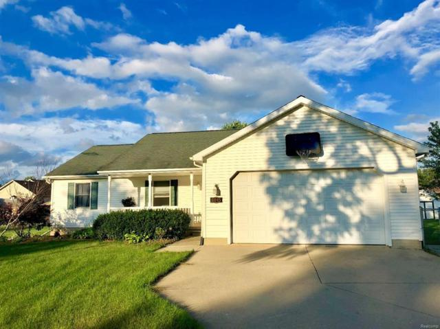 6045 S Occidental Highway, Raisin Twp, MI 49286 (#543258539) :: Duneske Real Estate Advisors