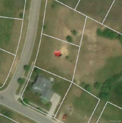 14255 Durant, Fenton Twp, MI 48451 (#50100003032) :: The Buckley Jolley Real Estate Team