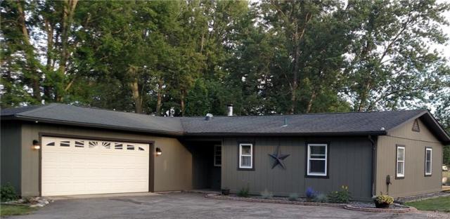 4666 Shangrila Drive, Hamburg Twp, MI 48169 (#218064799) :: The Buckley Jolley Real Estate Team
