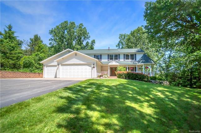 10399 Whitewood Meadows Lane, Hamburg Twp, MI 48169 (#218064803) :: The Buckley Jolley Real Estate Team