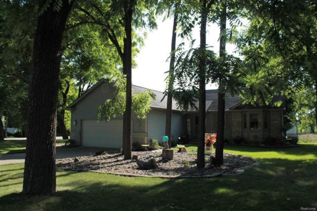14453 Ripley, Linden, MI 48451 (#50100003053) :: The Buckley Jolley Real Estate Team