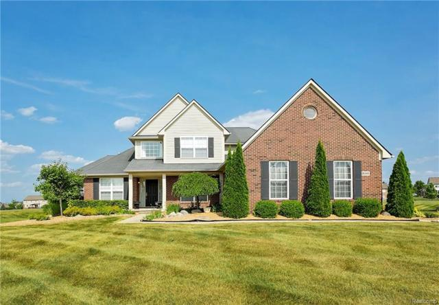 26340 Daria Circle W, Lyon Twp, MI 48178 (#218064974) :: The Buckley Jolley Real Estate Team