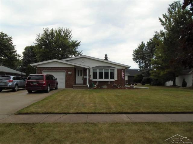 346 Beyerlein St., Frankenmuth, MI 48734 (#61031353669) :: The Mulvihill Group