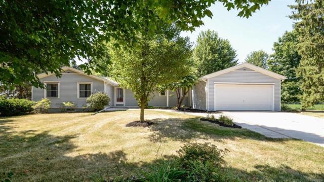 3149 Arkona Road, Saline Twp, MI 48176 (#543258561) :: Duneske Real Estate Advisors