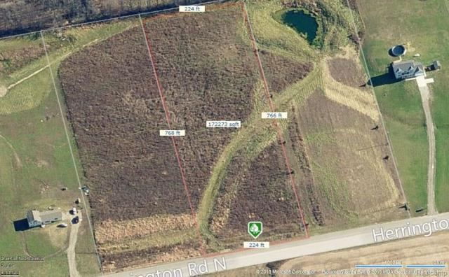 LOT 8 Herrington Road, Conway Twp, MI 48892 (#218065389) :: RE/MAX Classic