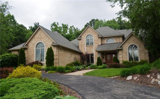 4233 Augusta Court, Genoa Twp, MI 48843 (#218065619) :: The Buckley Jolley Real Estate Team