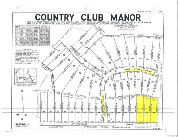 0000 Pineview Dr Lot #48, Mancelona Twp, MI 49659 (#218065909) :: The Mulvihill Group
