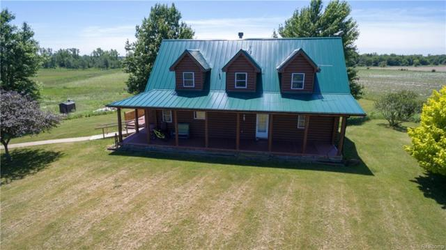 4103 Cade Road, Imlay Twp, MI 48014 (#218066047) :: The Buckley Jolley Real Estate Team