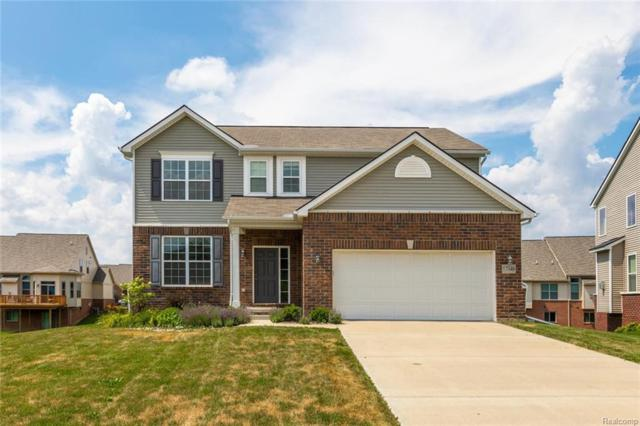 57348 Blossom Valley Trail, Lyon Twp, MI 48165 (#218066204) :: The Buckley Jolley Real Estate Team