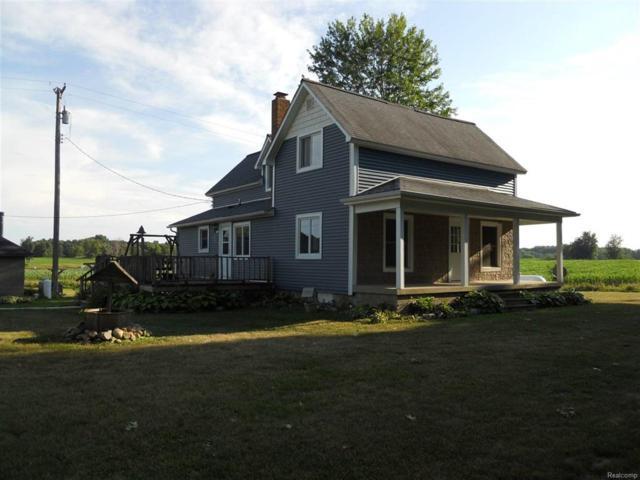 1087 W Murphy Lake, Watertown Twp, MI 48435 (#50100003114) :: RE/MAX Classic