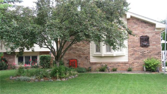 385 Tara Drive, Troy, MI 48085 (#218066751) :: Duneske Real Estate Advisors