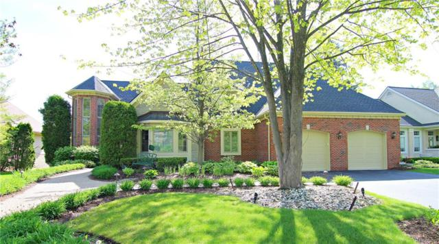 5504 Saint Andrew Drive, Independence Twp, MI 48348 (MLS #218066754) :: The Toth Team