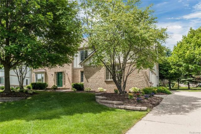 912 Mountainside Drive, Orion Twp, MI 48362 (#218066761) :: RE/MAX Classic