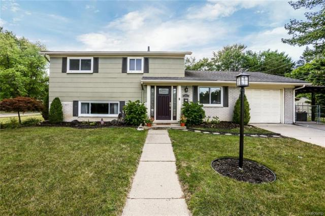 12011 Hines Court, Plymouth Twp, MI 48170 (#218066869) :: The Mulvihill Group