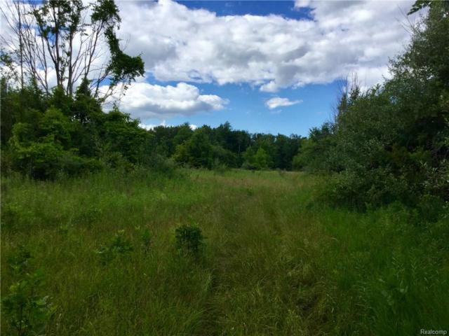 TBD Snover Road, Forester Twp, MI 48419 (MLS #218066943) :: The Toth Team