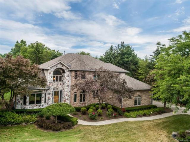 17313 Rolling Woods Circle, Northville Twp, MI 48168 (#218067118) :: RE/MAX Classic